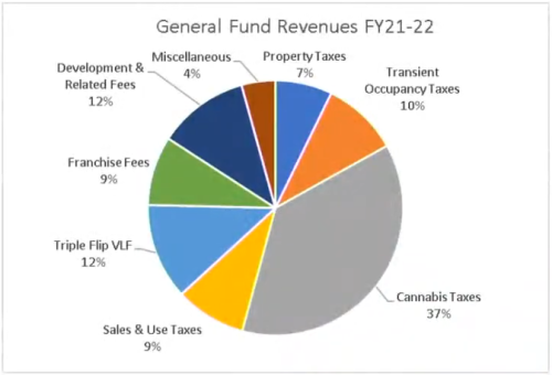 DHS Revenues FY 21-22